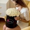 Lux Collection Trandafiri Albi