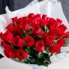 35 Trandafiri Roșii 30-40 cm