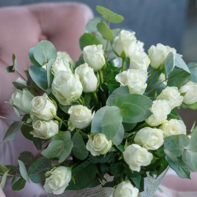 35 Trandafiri Albi