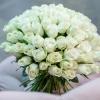 Trandafiri Albi 101 buc