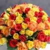 Trandafiri Mix Orange101 buc