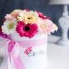 Cutie Mică cu Gherbere Mix Roz