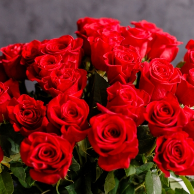 35 Trandafiri Roșii 70-80 cm