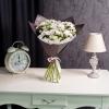 15 Crizanteme Albe