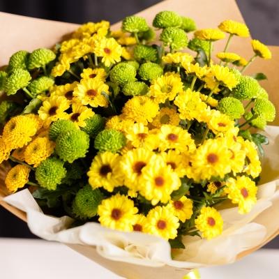 15 Crizanteme Galben-Verde