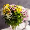 15 Crizanteme Multicolore în vază