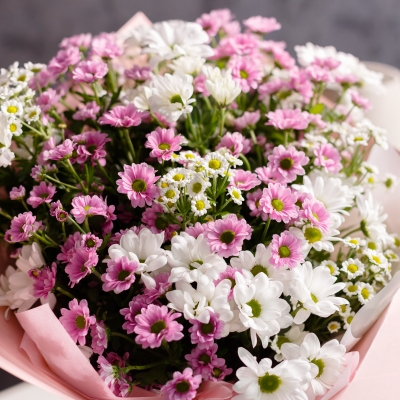 25 Crizanteme Alb-Roz