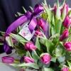 Lalele Violete în Coș