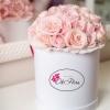 Cutie cu Trandafiri Sweet Avalanshe