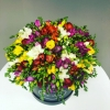 101 Frezii Multicolore în Cutie de Lux
