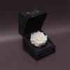 Trandafir Criogenat Alb Mare în Cutiuță de Catifea