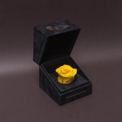 Trandafir Criogenat Galben în Cutiuță de Catifea