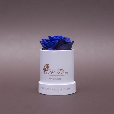 Trandafir Criogenat Albastru în Mini-Cutie Albă