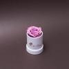 Trandafir Criogenat Mov în Mini-Cutie Albă