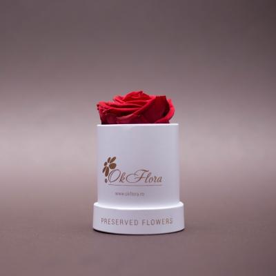 Trandafir Criogenat Roșu în Mini-Cutie Albă