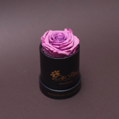Trandafir Criogenat Mov în Mini-Cutie Neagră