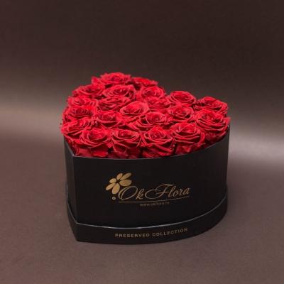 17 Trandafiri Criogenați Roșii în Inimă Neagră