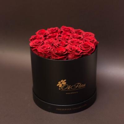 17 Trandafiri Criogenați Roșii în Cutie de Lux Mare Neagră