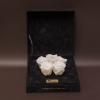 5 Trandafiri Criogenați Albi în Cutie de Catifea