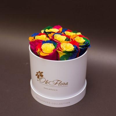 7 Trandafiri Criogenați Rainbow în Cutie de Lux Mică Albă