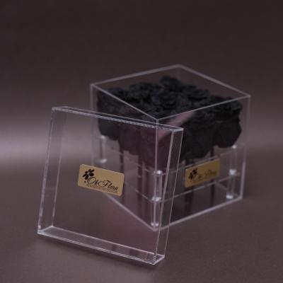 9 Trandafiri Criogenați Negri în Cutie Acrilică