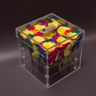 9 Trandafiri Criogenați Rainbow în Cutie Acrilică