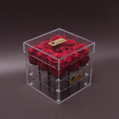 9 Trandafiri Criogenați Roșii în Cutie Acrilică