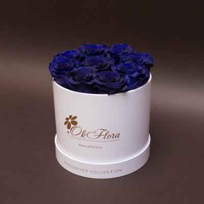 9 Trandafiri Criogenați Albaștri în Cutie de Lux Mică Albă