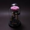 Trandafir Criogenat Roz Mare în Cupolă Mare