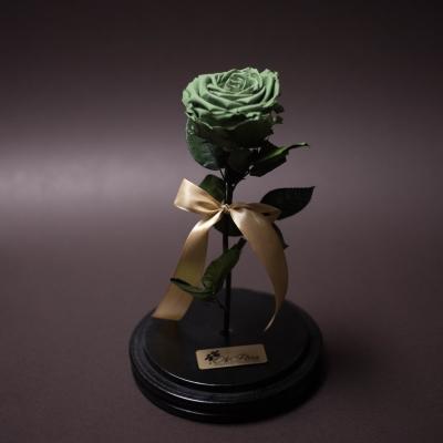 Trandafir Criogenat Verde Mare în Cupolă Mare