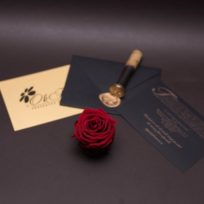 9 Trandafiri Criogenați Galbeni în Cutie de Lux Mică Albă