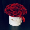 Trandafiri Rosii în Cutie
