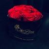 Trandafiri Roșii în Inimă de Catifea