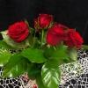 Buchet din 7 Trandafiri Roșii în Plasă