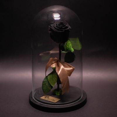 Trandafir Criogenat Negru în Cupolă Mare