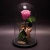 Trandafir Criogenat Roz în Cupolă Mare