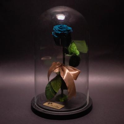 Trandafir Criogenat Turcoaz în Cupolă Mare