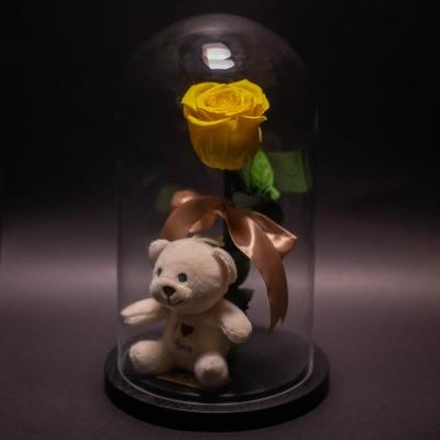 Trandafir Criogenat Galben și Ursuleț în Cupolă