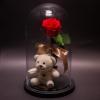 Trandafir Criogenat Roșu și Ursuleț în Cupolă
