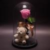 Trandafir Criogenat Roz și Ursuleț în Cupolă