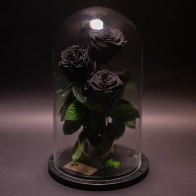 3 Trandafiri Criogenați Negri în Cupolă
