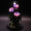 3 Trandafiri Criogenați Roz-Mov în Cupolă