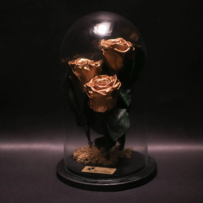 3 Trandafiri Criogenați Golden în Cupolă