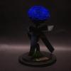 Trandafir Criogenat Albastru Mare în Cupolă