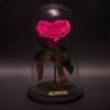 Trandafir Criogenat Inimă Fuchsia în Cupolă