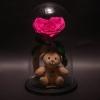 Trandafir Criogenat Inimă Fuchsia și Ursuleț în Cupolă