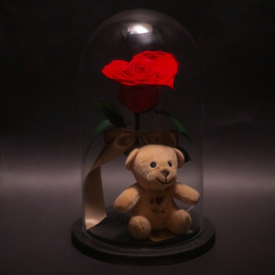 Trandafir Criogenat Inimă Roșie și Ursuleț în Cupolă