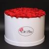 Cutie Albă cu 101 Trandafiri Roșii