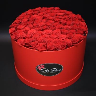 Cutie Roșie cu 51 Trandafiri Roșii