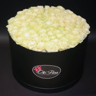 Cutie Neagră cu 101 Trandafiri Albi
